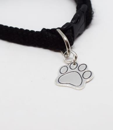 tundtass i silver på hundhalsband mot vit bakgrund