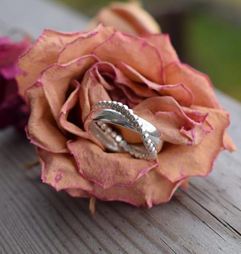 silverring i vacker ros utomhus