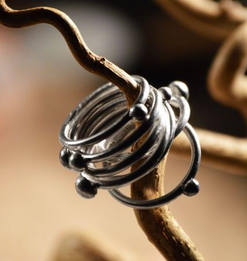 många smala silverringar på trädgren