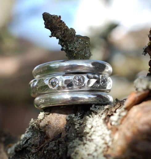 tre grova silverringar på trädgren utomhus