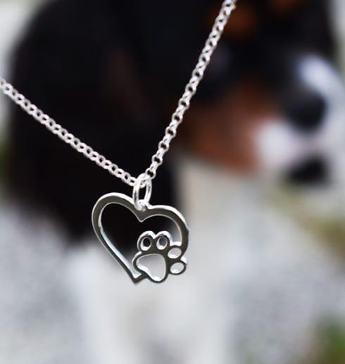 silverhjärta med tass hängande i luften framför en hund